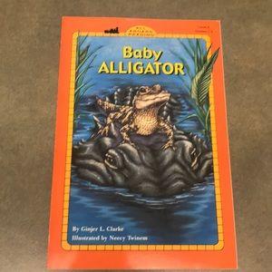 5/$10 - Book - Baby Alligator